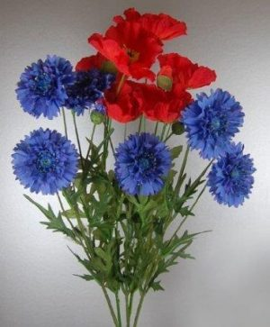 Bunch of Conflowers and Poppies