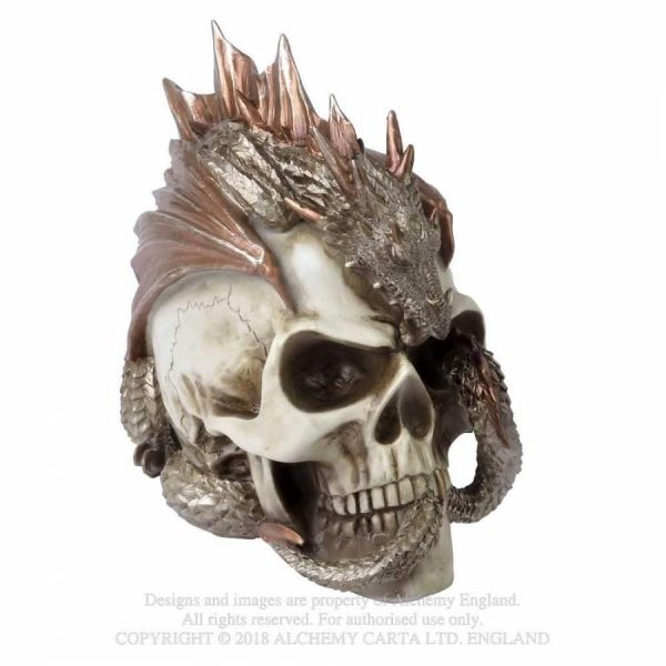 Dragon Keepers Skull