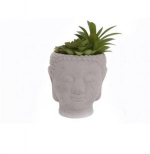 Buddha Head with Succulent